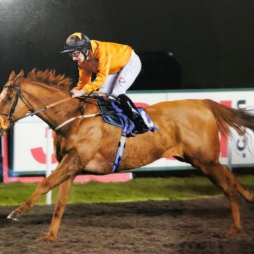 Deeley's Double breaks his maiden