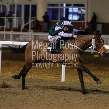 Chocolate Box makes a winning debut for the yard
